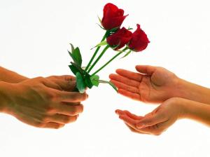 entregar uma rosa